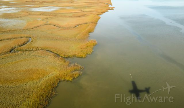 Cessna Skylane (N1967X) - Landing Charleston....