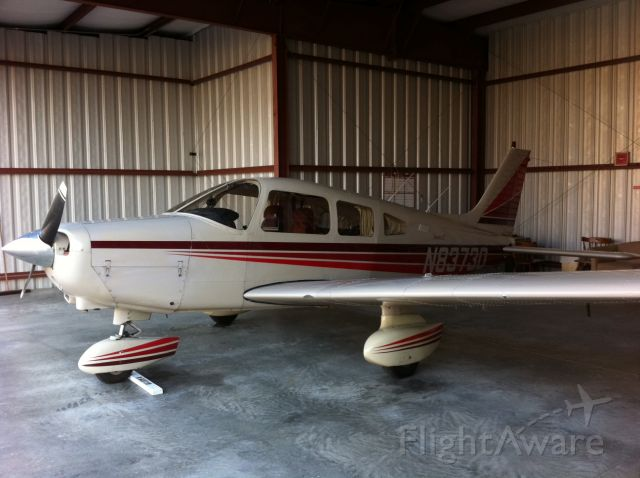 Piper Cherokee (N8373D) - 1981 Piper Warrior II