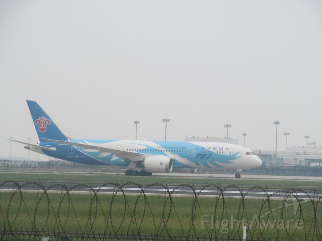 Boeing 787-8 (B-2725) - China Southern Airlines CZ3103 landing in Beijing runway 18R. Best Shot of my life!!! And I found a new plane spotting location, though it is only accessible by a trek through a nearby village and field!