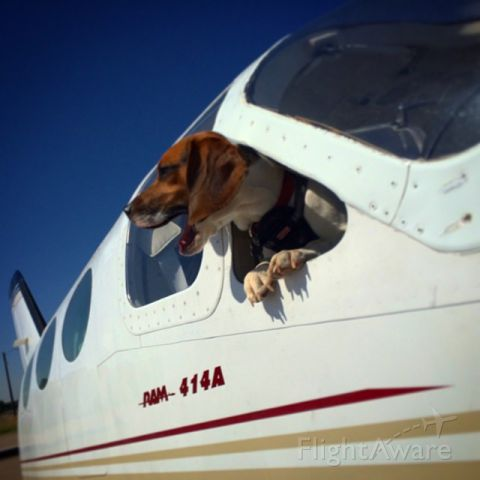 Cessna Chancellor (N810PC) - Clear Prop!