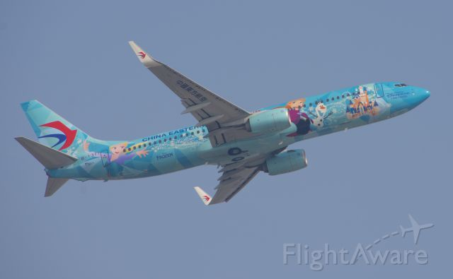 Boeing 737-800 (B-1317) - Frozen Livery 737-800<br />Taken from Civil Aviation University Of China