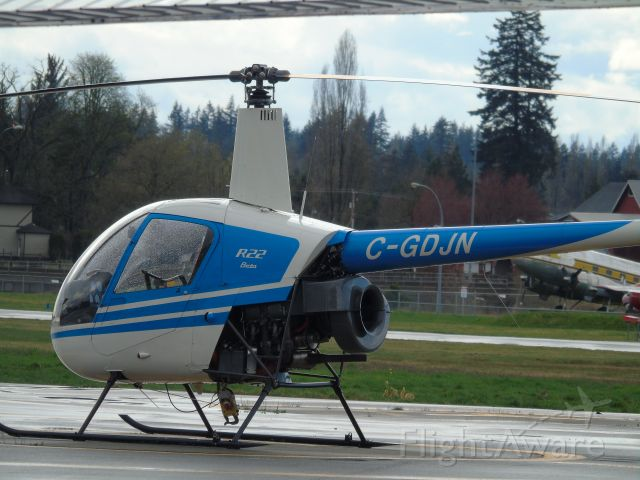 Robinson R-22 (C-GDJN)