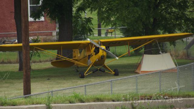Piper NE Cub — - My 200th photo on FlightAware!