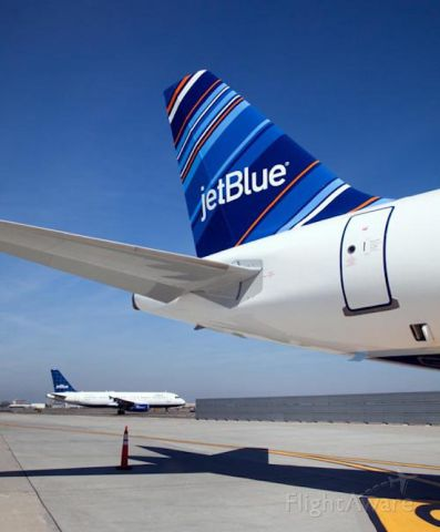 Airbus A320 (N531JL) - JetBlues newest tail.  Very nice.  Courtesy of JetBlue Jae based at KBOS.