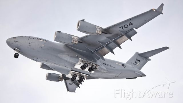 Boeing Globemaster III (17-7704) - Very low approach from 177704 at CFB Trenton, on whites road! It was quite the thrill!
