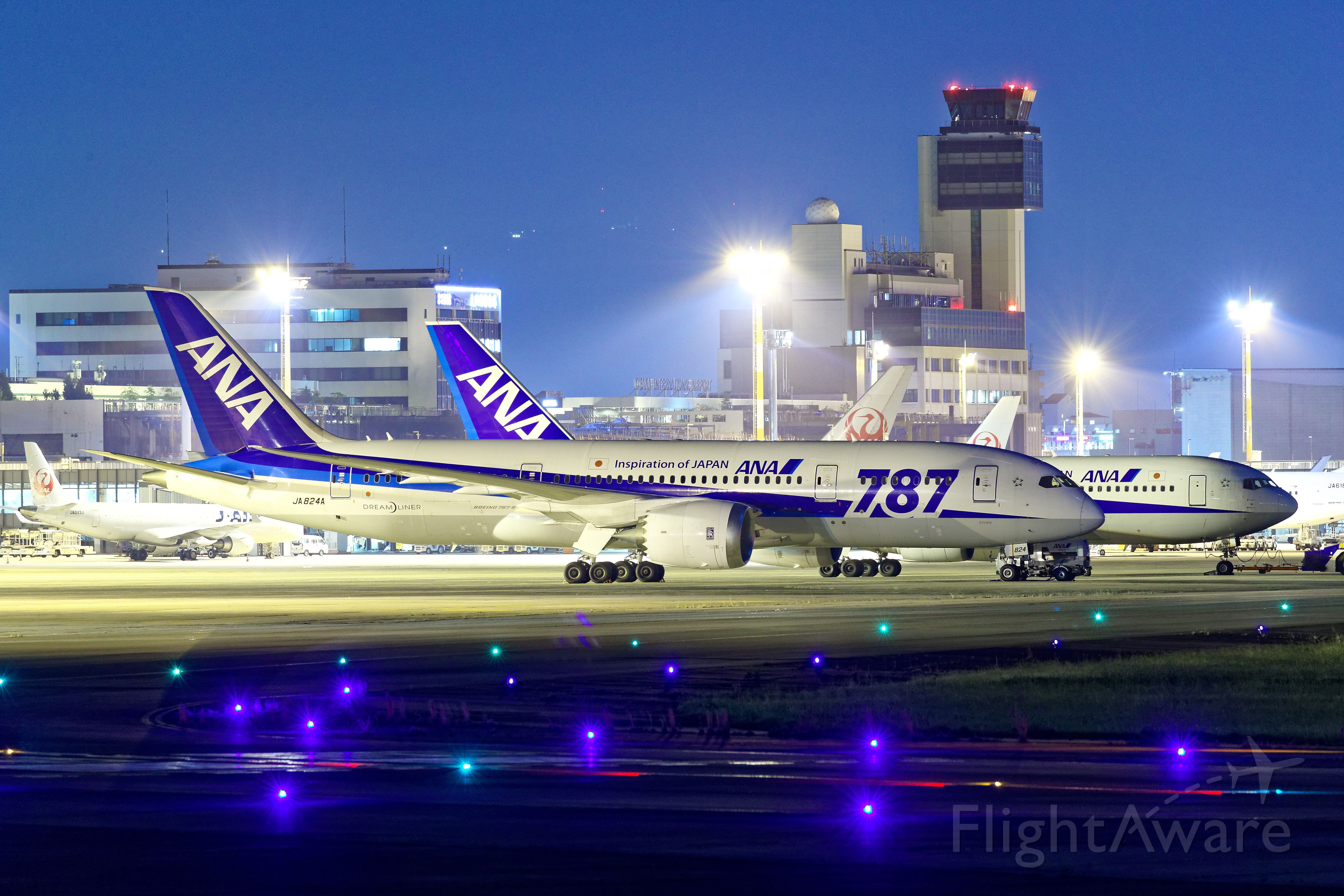 Boeing 787-8 (JA824A)