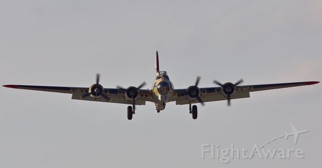 Boeing B-17 Flying Fortress (N93012) - Face to face with the Flying Fortress