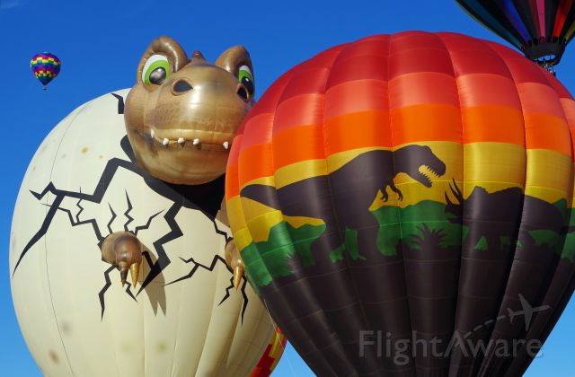 Unknown/Generic Balloon — - SOLBERG AIRPORT-READINGTON, NEW JERSEY, USA-JULY 25, 2015: Welcome to Jurassic Park. Seen at the 2015 Quick Chek New Jersey Festival of Ballooning were two dinosaur themed hot air balloons.