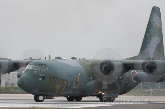 Lockheed C-130 Hercules (75-1077)