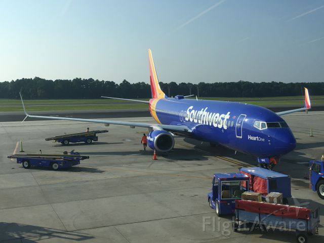 """Boeing 737-800 (N8642E) - Southwests """"Heart One"""" parked at RDU on August 17, 2018."""