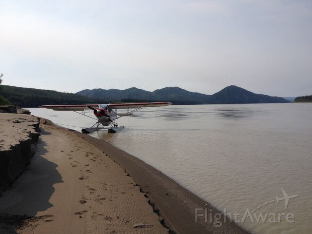 N1907A — - On the banks of the Yukon River