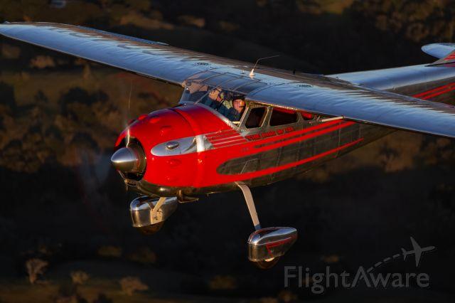 Cessna LC-126 (N3491V) - photo (c) Chris Kunkle