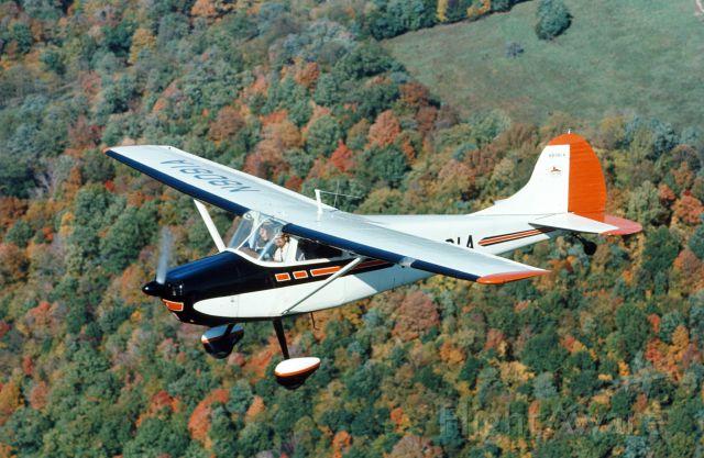 Cessna 170 (N8081A)