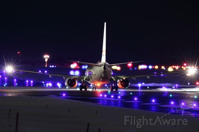 Boeing 737-800 (JA329J)