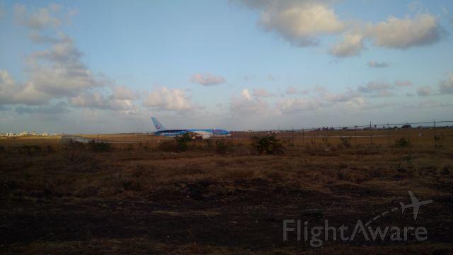 Boeing Dreamliner (Srs.8) (G-TUIE)