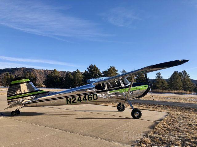 Cessna 170 (N2446D) - Pristine 1952 Cessna 170B