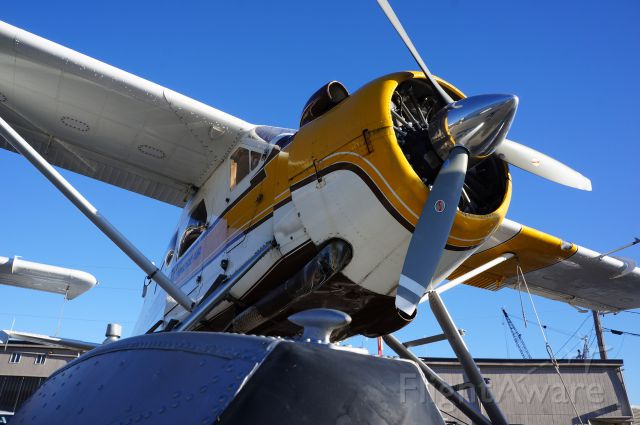 De Havilland Canada DHC-3 Otter (N9766Z)