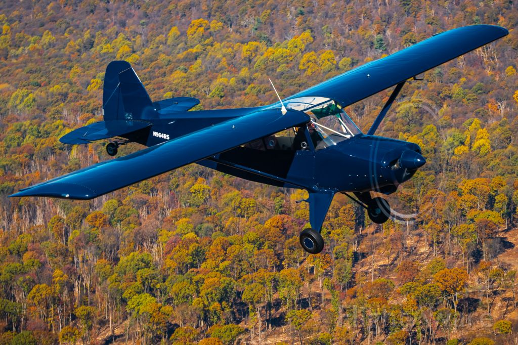 R & B RB-4 Bearhawk (N964RS) - Air to Air picture of Bearhawk Patrol N964RS flying over the leftovers of fall foliage.