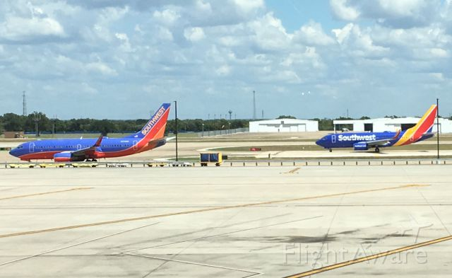Boeing 737-900 — - Old and new SWA livery