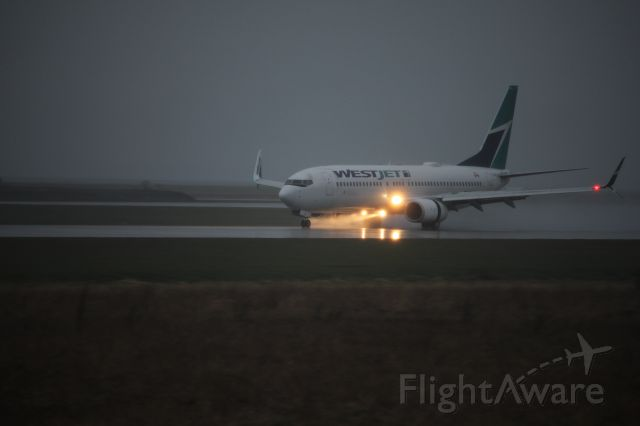 Boeing 737-800 (C-FKWJ) - Spotting by 26R/08L. A WestJet 738 slowing down with mist coming up, illuminated by the landing lights.