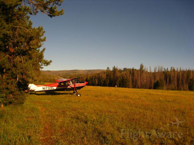 Cessna Skywagon 180 (N1709C)