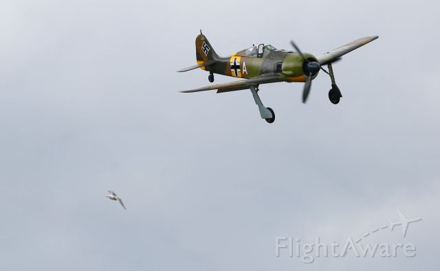 — — - Two Old Birds Focke-Wulf FW190A and Seagull