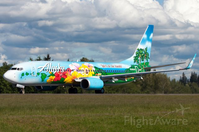 """Boeing 737-800 (N560AS) - Alaska Airlines new """"Hawaii"""" Livery """"Spirit of the Islands"""" leaving after getting painted."""