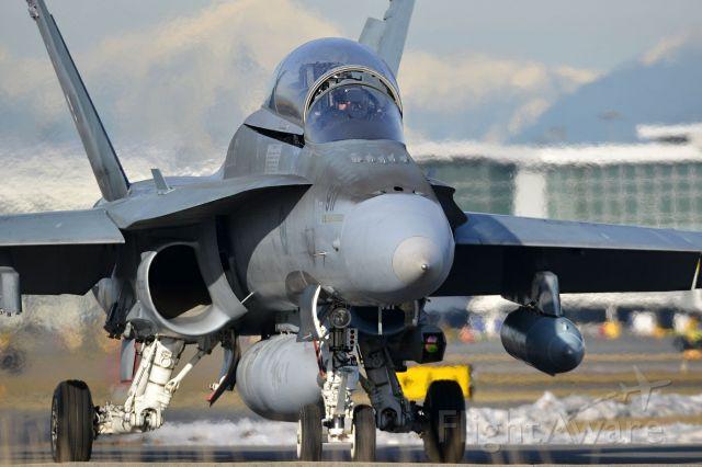 McDonnell Douglas FA-18 Hornet (18-8917)