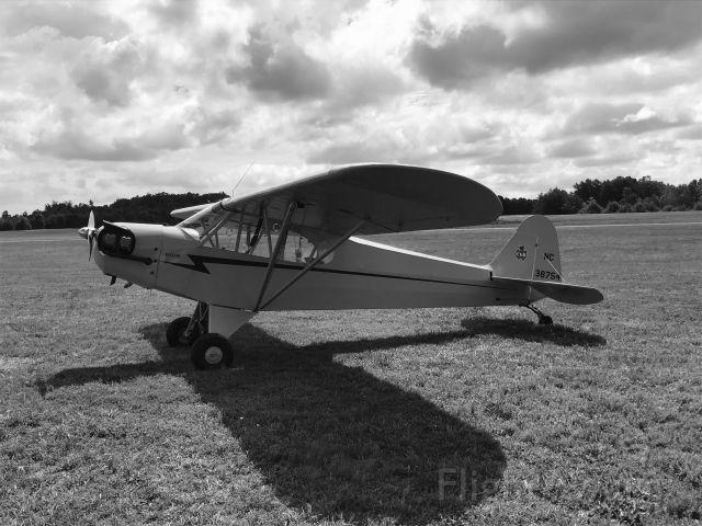 Piper NE Cub (N38754) - Ready to go!
