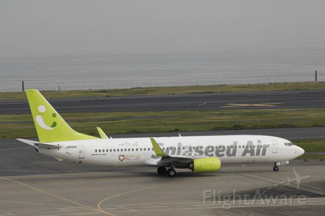 Boeing 737-800 (JA808X) - Taxing at Haneda Intl Airport on 2014/10/25 Okinawa Yanbaru Hanameguri Logo