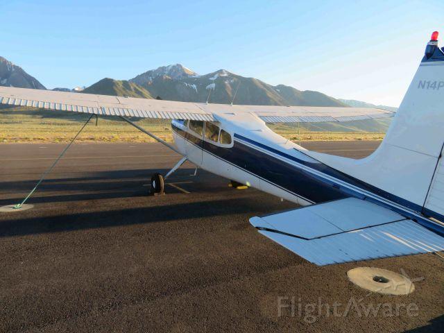 Cessna Skywagon 180 (N14PL)