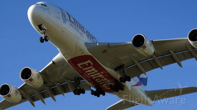 Airbus A380-800 (A6-EDR)
