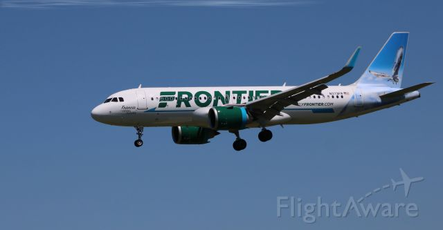 """Airbus A320neo (N373FR) - On final is this brand new Frontier Airlines Airbus A320-251N with this wading bird """"Francie"""" the Piping Plover shown on the tail in the Spring of 2021."""