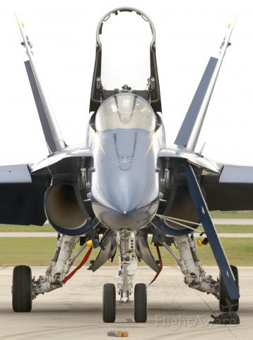 McDonnell Douglas FA-18 Hornet — - Nose of the Sting