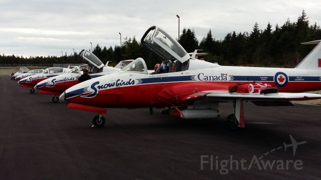 Canadair CL-41 Tutor (11-4033) - Canadian Forces Acrobatic Team.