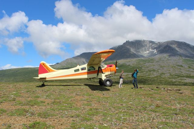 "De Havilland Canada DHC-2 Mk1 Beaver (N67066) - Beaver on 35"" Bushwheels, 20 miles east of Kokhanok AK."
