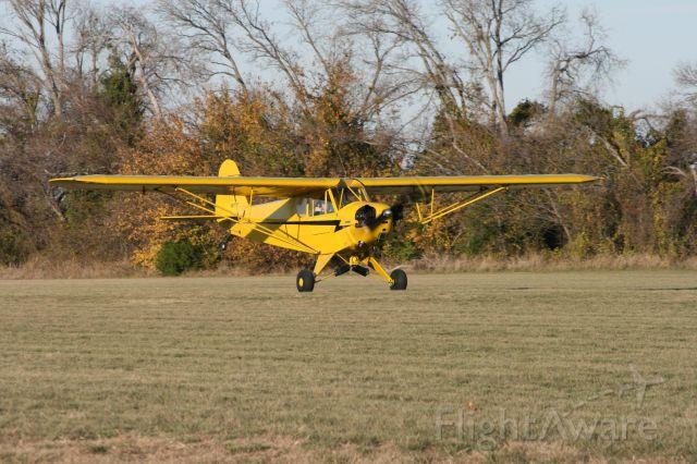 Piper L-21 Super Cub (N87773)