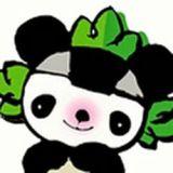 LOCAL PANDA