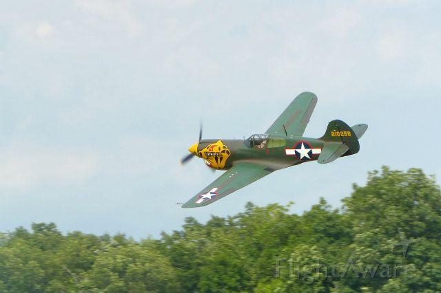 — — - P-40