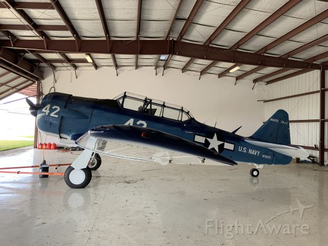 North American T-6 Texan (N700TS)