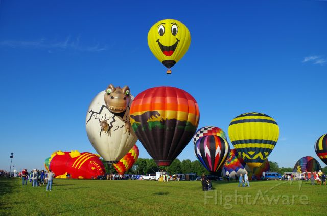 Unknown/Generic Balloon — - SOLBERG AIRPORT-READINGTON, NEW JERSEY, USA-JULY 25, 2015: Seen at the 2015 Quick Chek New Jersey Festival of Ballooning were two dinosaur themed hot air balloons and a smiley face hot air balloon.