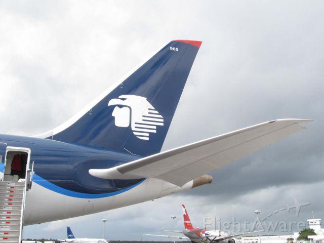 Boeing 787-8 (N965AM) - walkaround