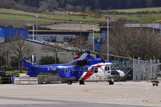 TUSAS Cougar (G-TIGE) - Bristow Helicopters AS-332L Super Puma G-TIGE in Aberdeen Heliport