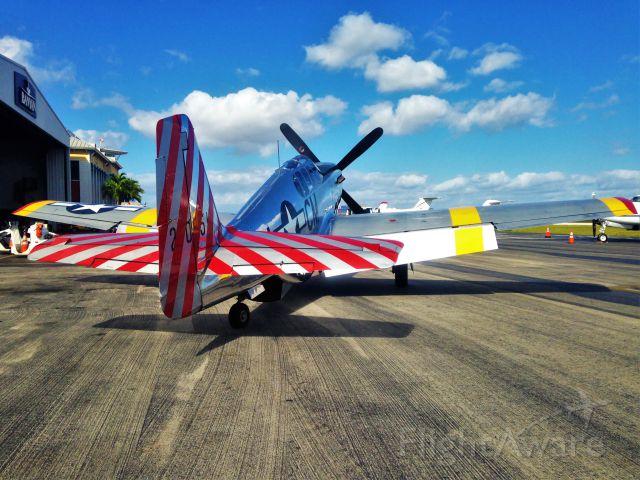 North American P-51 Mustang (NL251MX)