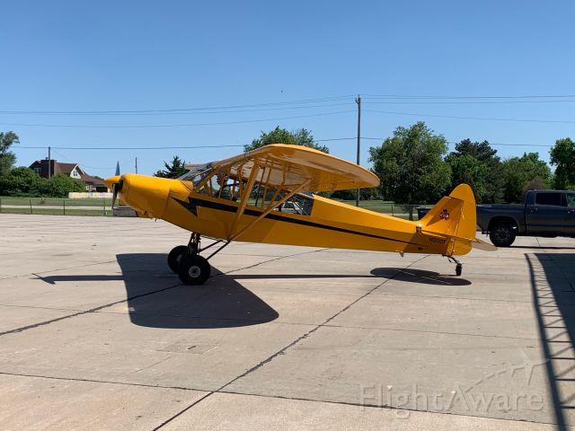 Piper L-21 Super Cub (N300T)