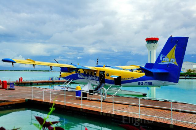 De Havilland Canada Twin Otter (8Q-TML) - 2008