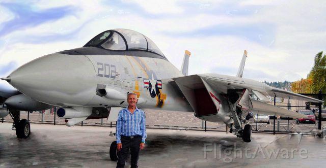 Grumman F-14 Tomcat — - my favorite ever: Tomcat