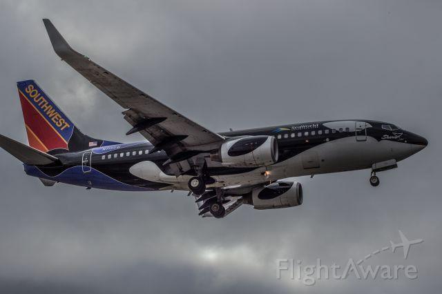 Boeing 737-700 (N715SW) - Southwest 737 Sea world livery. Taken November 2014.