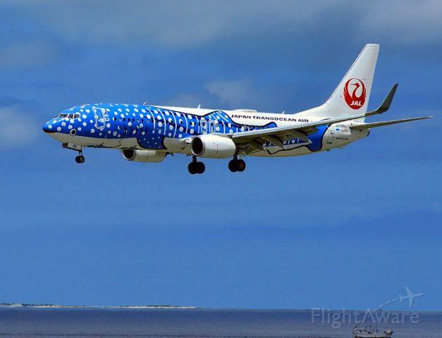 Boeing 737-800 (JA05RK) - Blue Whale Shark