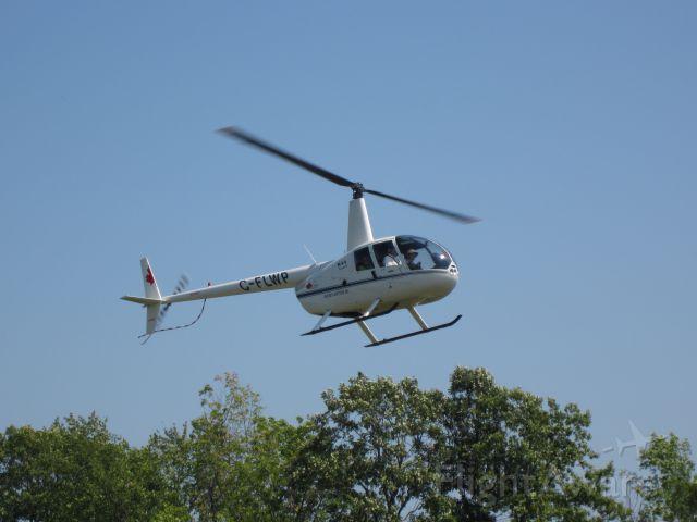 Robinson R-44 (C-FLWP) - Kouri